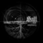 Salt and Sanctuary (ソルト アンド サンクチュアリ)  最強の盾 「鉄の壁」
